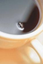 koffiezonder.jpg